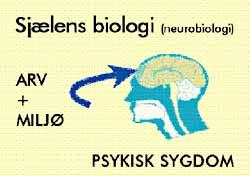 skizotypisk sindslidelse symptomer